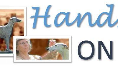 Hands On 2 – Whippet -rotuseminaari 19.11.2016