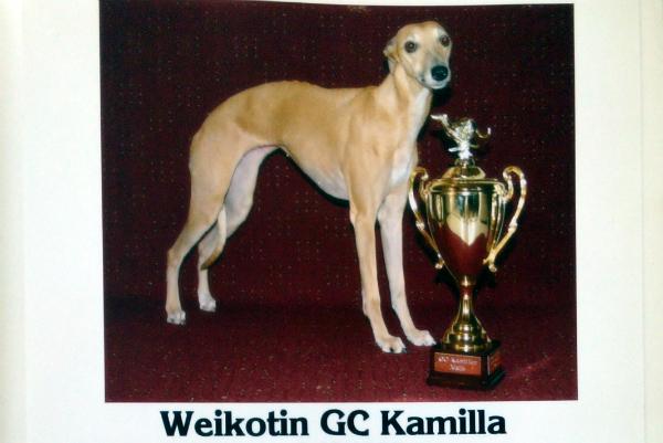 weikotin_gc-kamilla