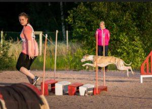 5. Sagramour Magic Endeavor, omistaja ja ohjaaja Tuuli Strang © Ossi Lehtinen