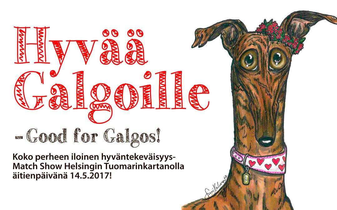 Työntekijöitä tarvitaan: Hyvää Galgoille – hyväntekeväisyys Match Show
