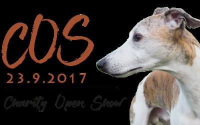 Charity Open Show 23.9.2017 AIKATAULU