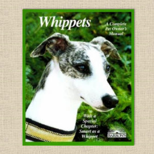Coile_Whippets