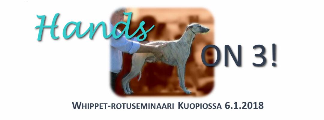 Hands On 3! Kuopiossa 6.1.2018