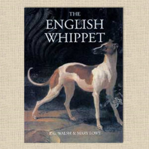 Lowe_The_English_whippet