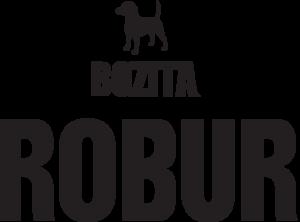 Robur logo 2016 RGB hi-res