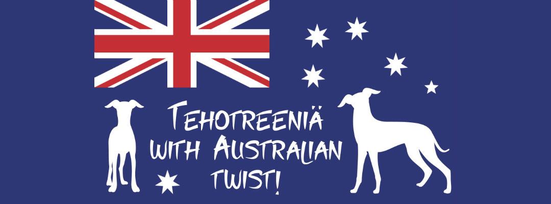 Tehotreeniä with Australian twist! Näyttelytreenit ShowHau Centerissä 26.3.2018