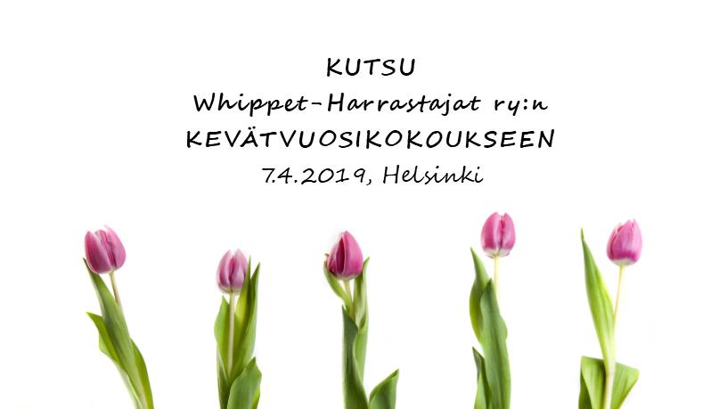 Kutsu kevätvuosikokoukseen 7.4.2019